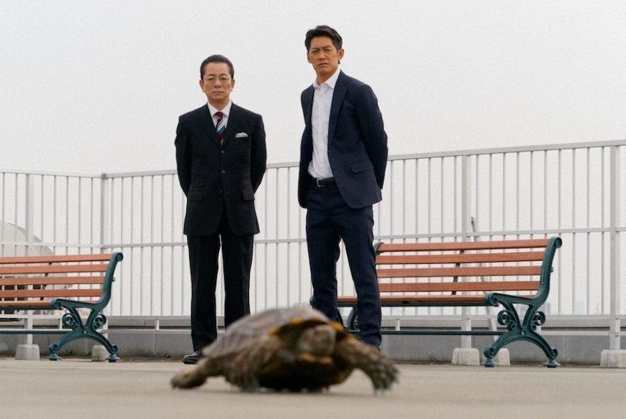 7話 鮫島さんを追いかける亀_R